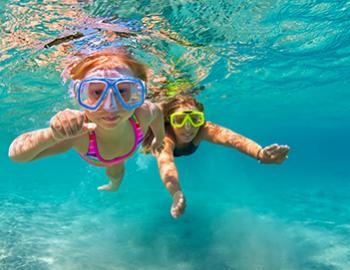 Snorkeling Gulf Shores