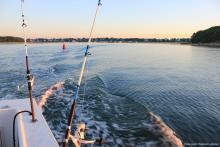 fishing gulf shores alabama