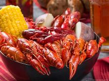 Join us for the Zydeco and Crawfish Festival in Gulf Shores, Alabama this Spring