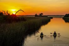 Little Lagoon in Gulf Shores, AL, is a wonderful destination for stunning scenery and outdoor fun! Learn more about it on our blog today!