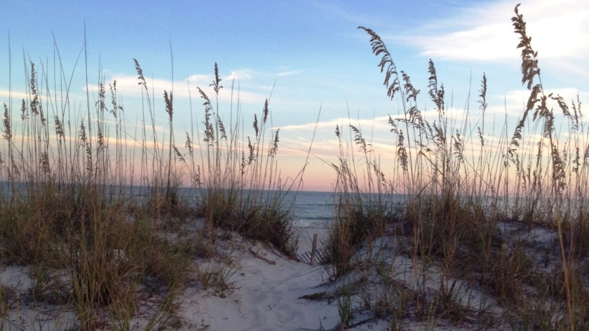 Gulf Shores Sunrise Beach & Sea Oats